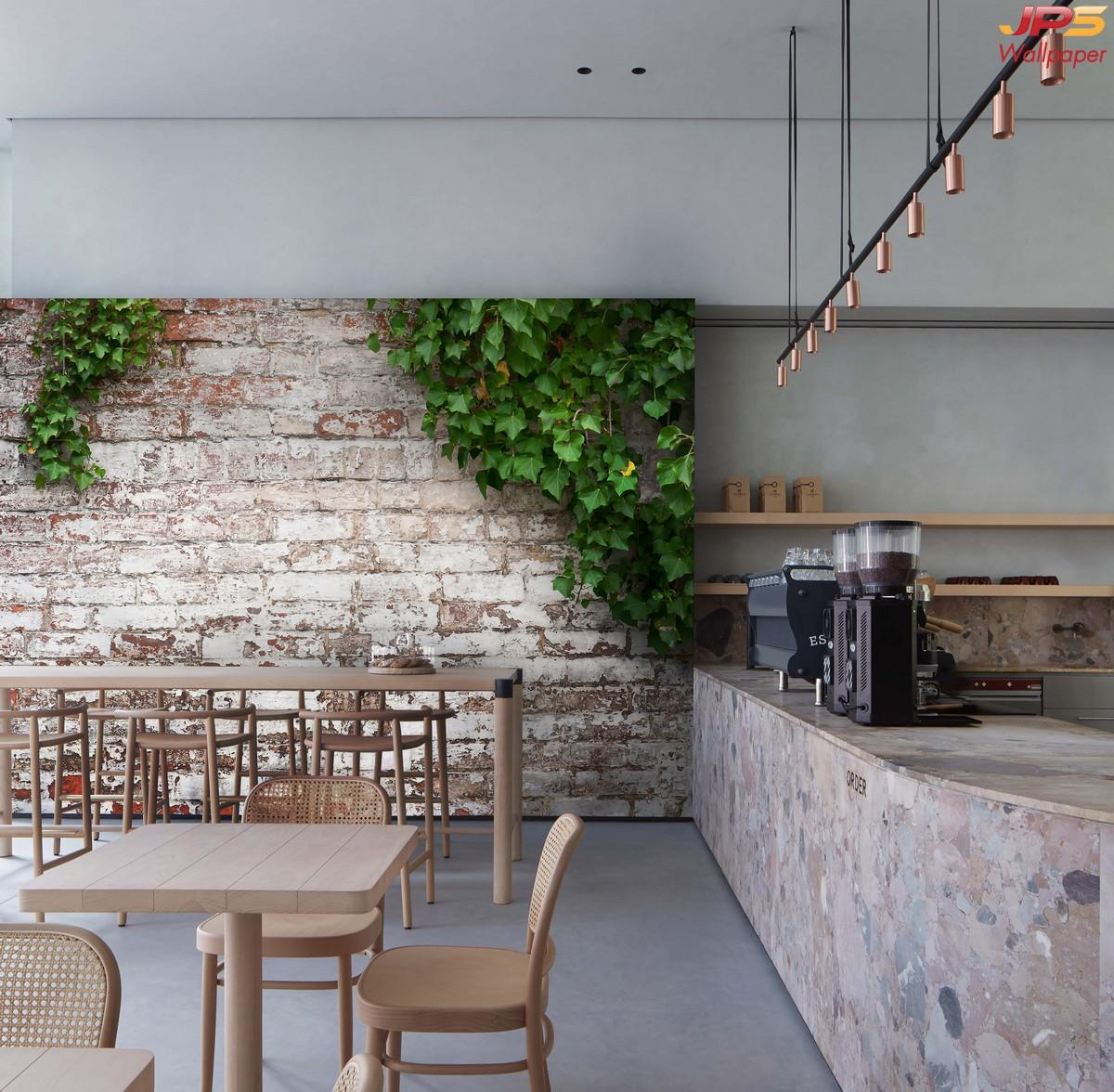 วอลเปเปอร์ติดผนังลายอิฐเผาTropical วอลเปเปอร์แต่งร้านกาแฟ แต่งผนังร้านกาแฟเท่ๆ แต่งผนังร้านกาแฟธรรมชาติ