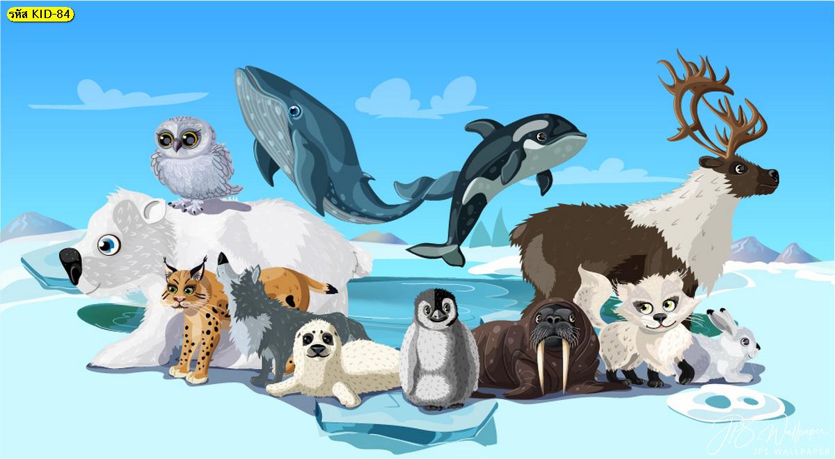 วอลเปเปอร์การ์ตูน เหล่าสัตว์ขั้วโลกเหนือ