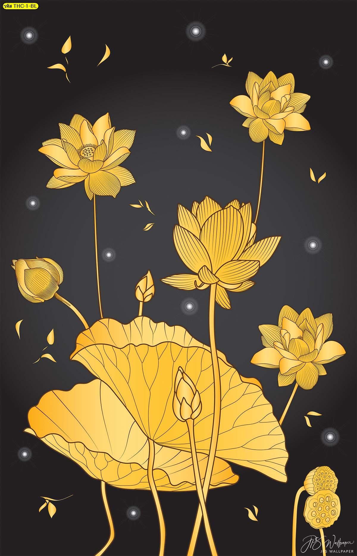 วอลเปเปอร์ลายดอกบัวทองพื้นสีดำ รูปดอกบัวบาน ฉากหลังห้องพระสวยๆ