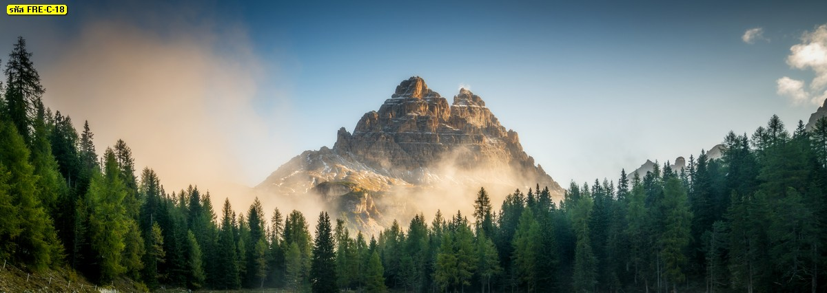 ภาพสั่งพิมพ์ตามขนาดลายธรรมชาติหมอกบนภูเขาและป่าสนสีเขียว