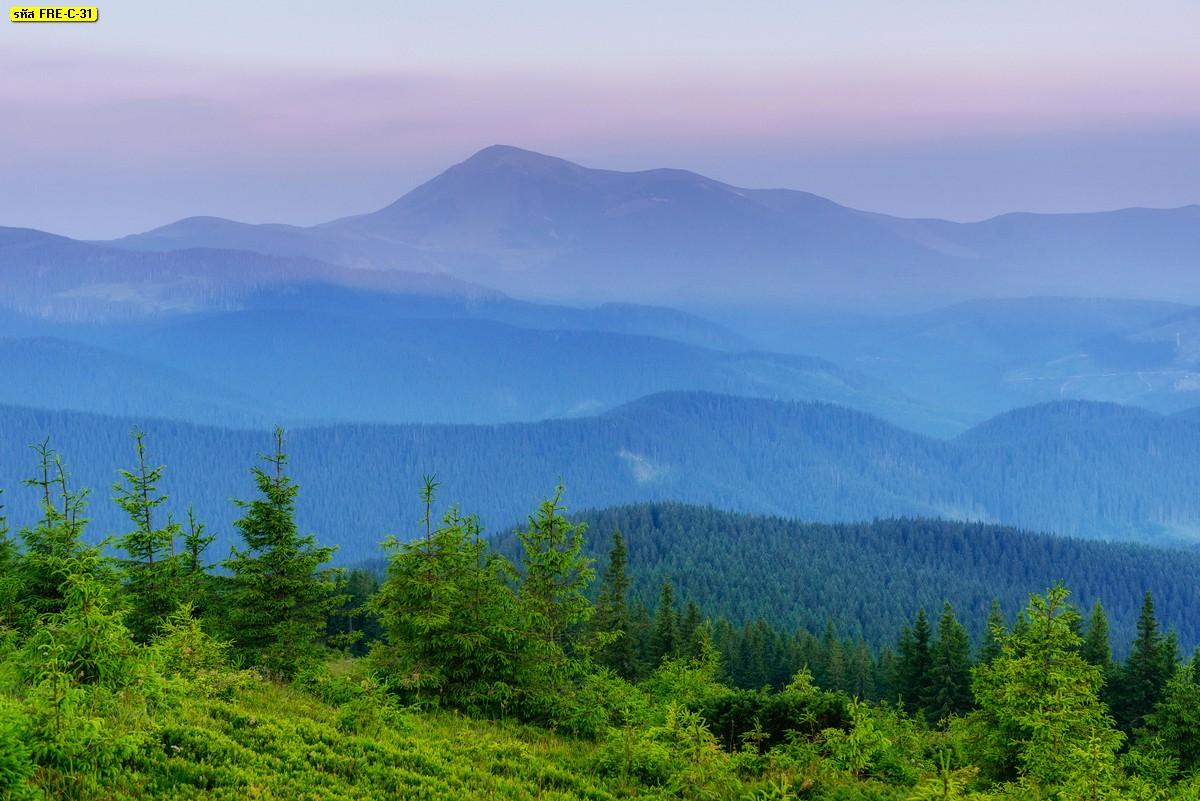 วอลเปเปอร์สั่งปริ้นลายธรรมชาติต้นไม้ภูเขา ทะเลหมอก