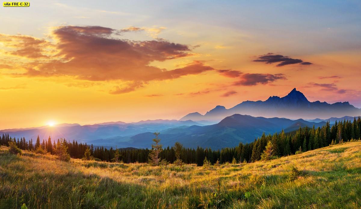 ภาพพิมพ์สั่งทำสไตล์ธรรมชาติ วอลเปเปอร์ทุ่งหญ้ากว้างตอนพระอาทิตย์ตก