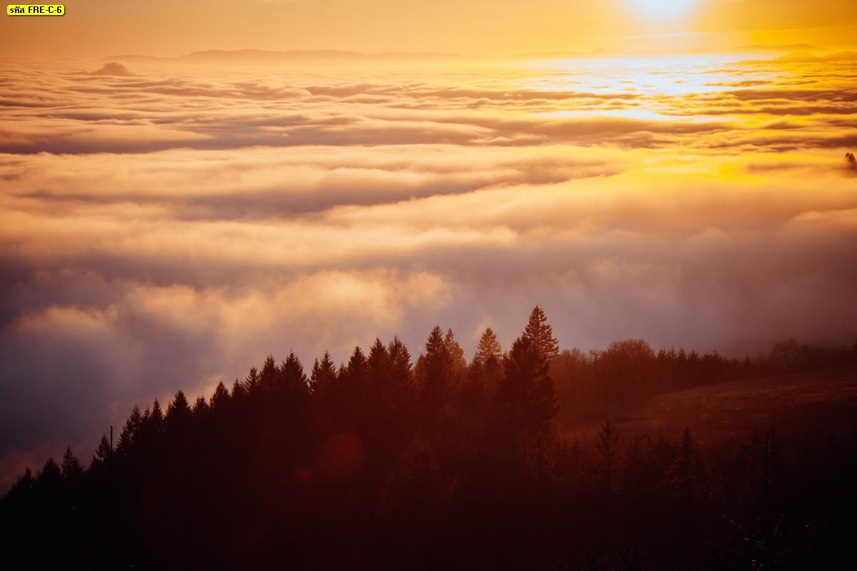 วอลเปเปอร์วิวทะเลหมอกยามเช้าท้องฟ้าสีส้ม วิวบรรยากาศธรรมชาติ