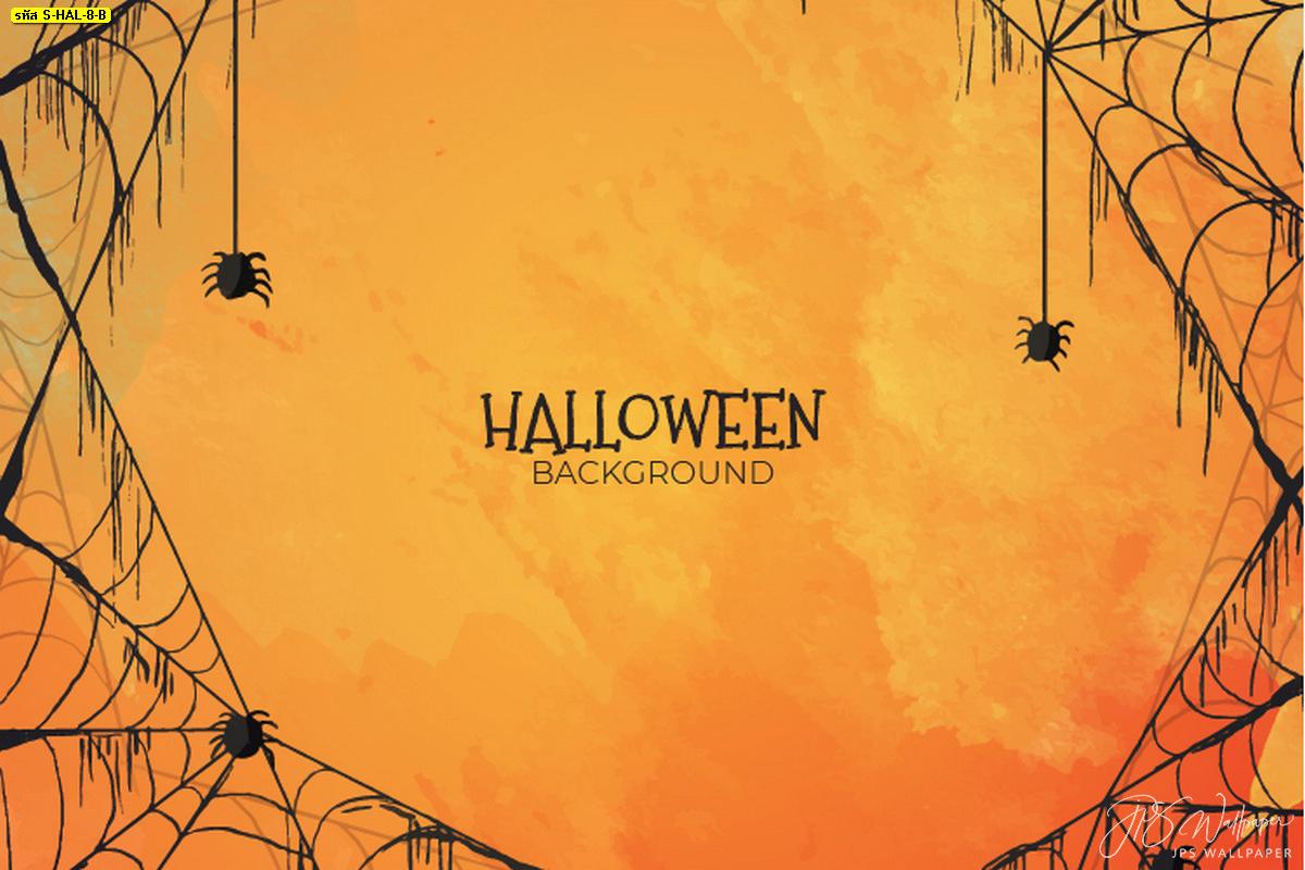 Halloween Background แต่งฉากหลังห้องวันฮาโลวีน ใยแมงมุมพื้นหลังสีส้ม