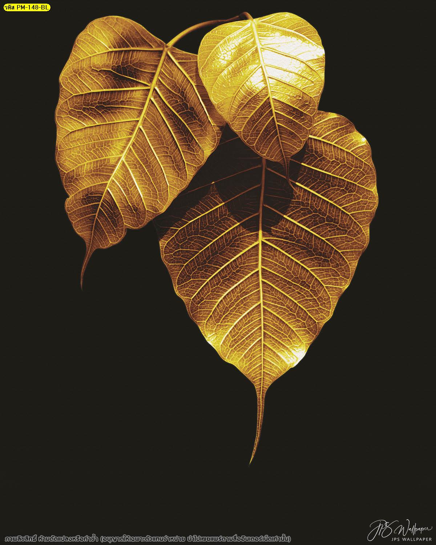 วอลเปเปอร์ใบโพธิ์ทองพื้นหลังสีดำเรียบ ลายไทยใบโพธิ์ทอง