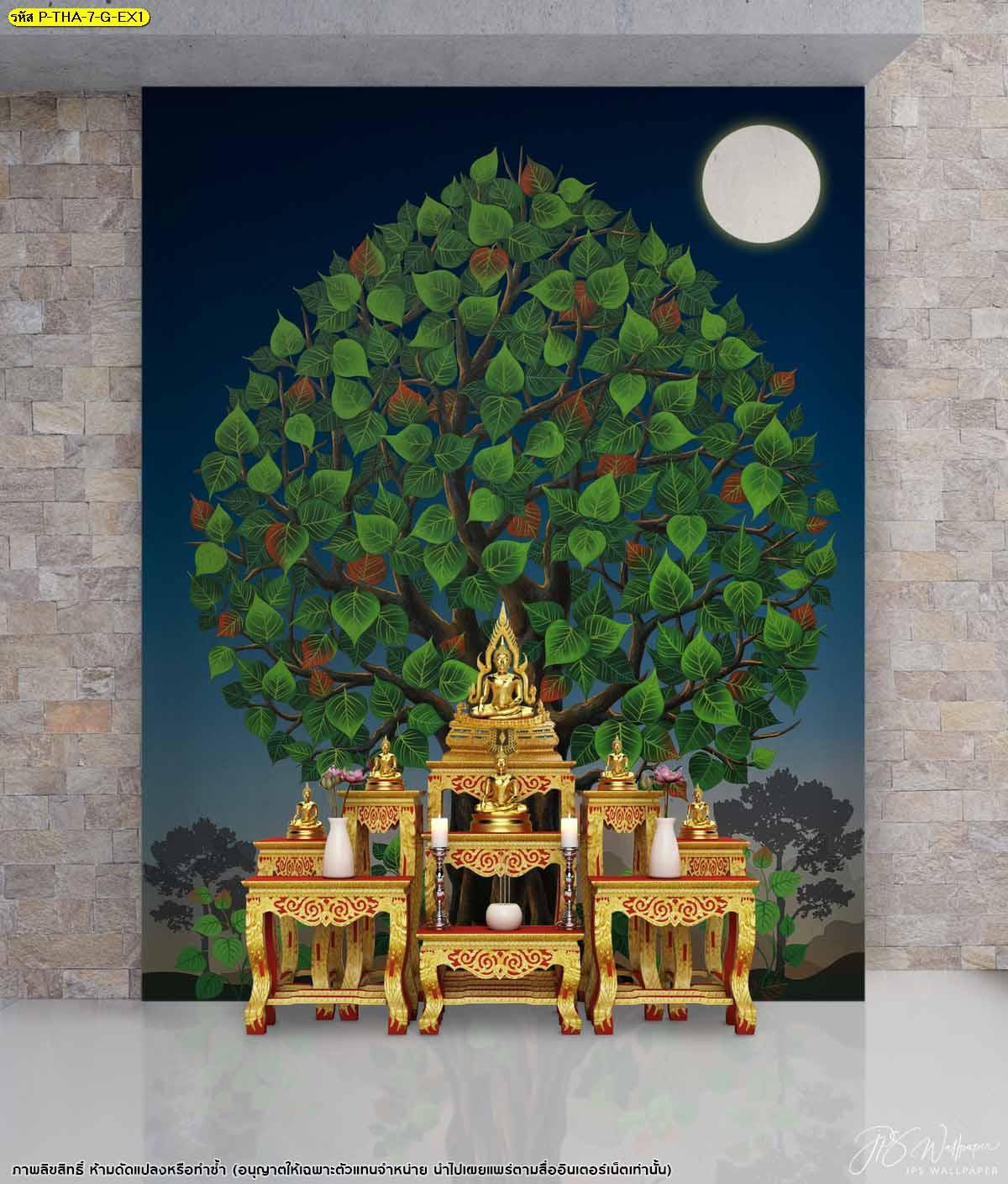 ต้นโพธิ์เชื่อกันว่าเป็นต้นไม้ศักดิ์สิทธิ์ช่วยขจัดความทุกข์ เสริมความเป็นมงคล